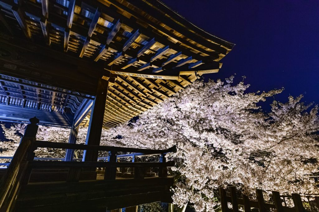 三井寺 観音堂周辺