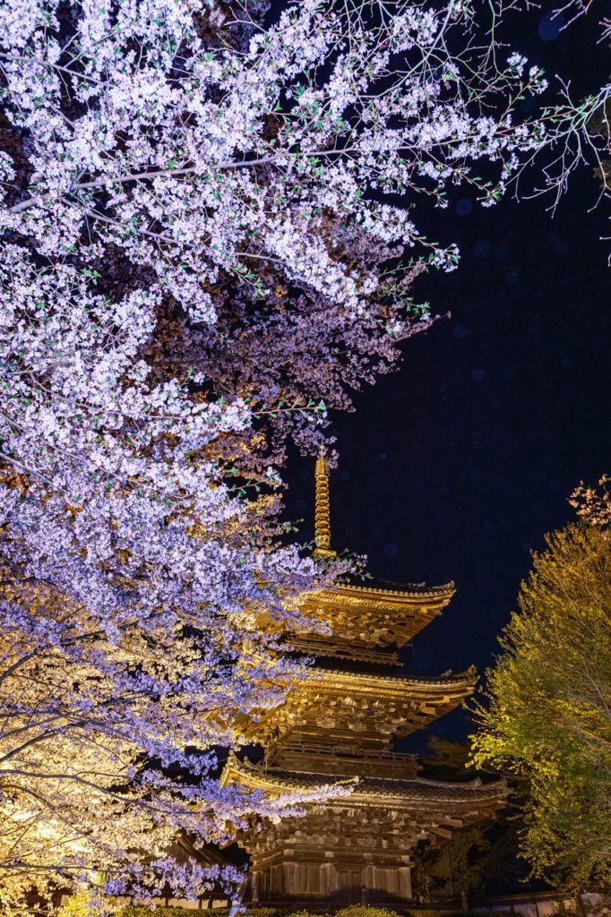 三井寺 三重塔付近